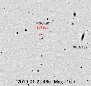 板垣公一發現鯨魚座超新星